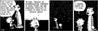 Calvin and Hobbes 10-11-94