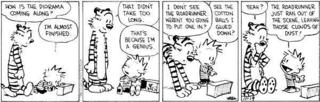 Calvin and Hobbes 11-19-94