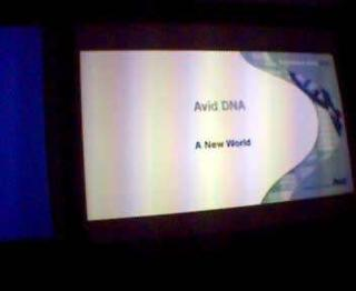 avid DNA launch