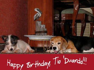 Bestest Birthday Greetings to Tiodu!
