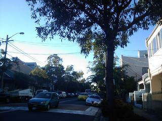 Beautiful autumn morning in Sydney.