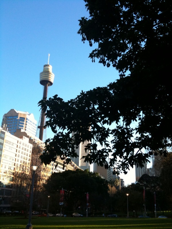 Ohai, Sydney CBD. 