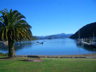 Cable bay - and the start of our Tortuous Tour de New Zealand
