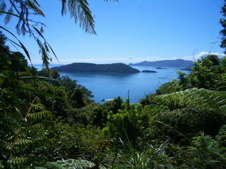 Queen Charlotte Track cont...