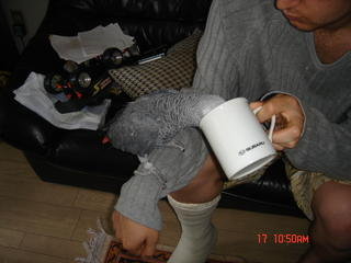 Taghi trying to drink from a cup