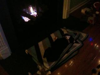 Mugsy passed out in front of the fire